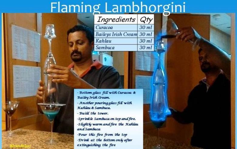 14flamelamb